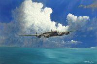 bomber aircraft painting